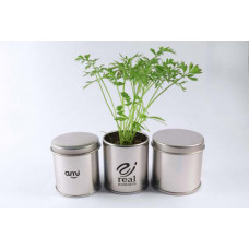Sprout Tin