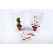 Sprout Mini Greenhouse